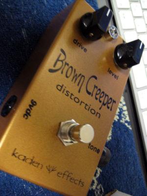 Kaden Effects Brown Creeper Distortion